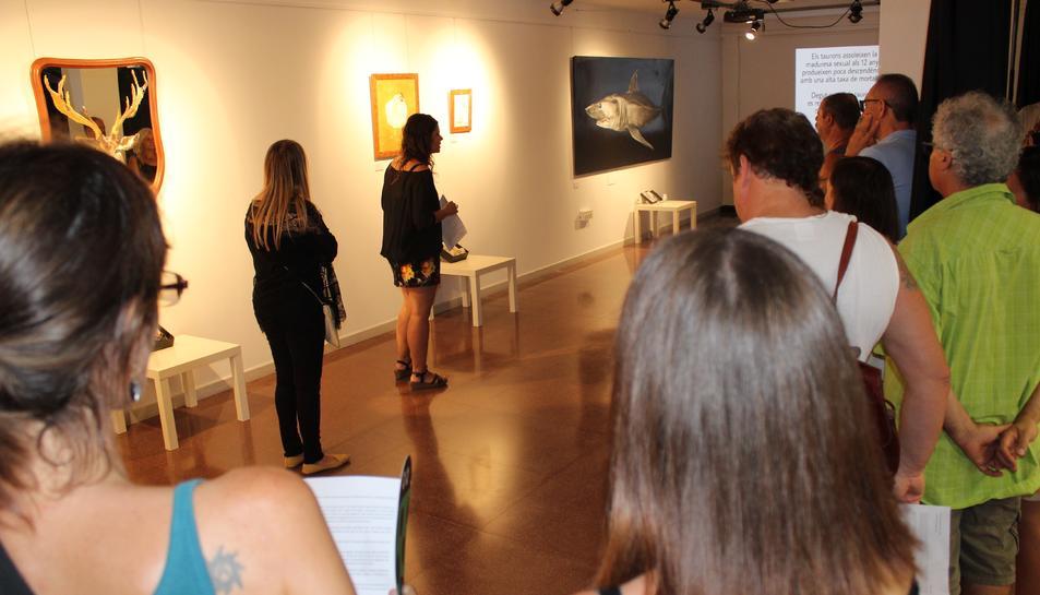 Imatge de l'exposició 'Iceberg', que es podrà visitar a l'Espai Jove Kesse.