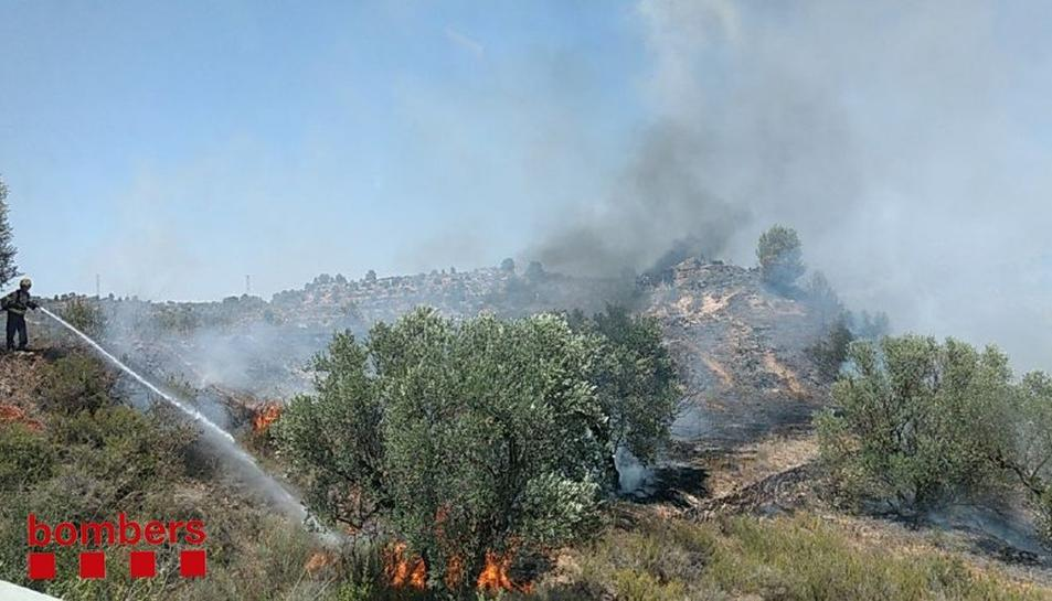 Una imatge de l'incendi.