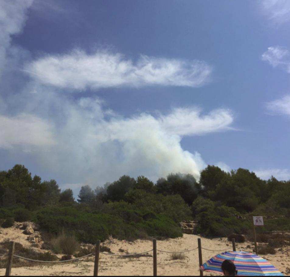 El foc s'ha originat en una zona forestal a la Savinosa.