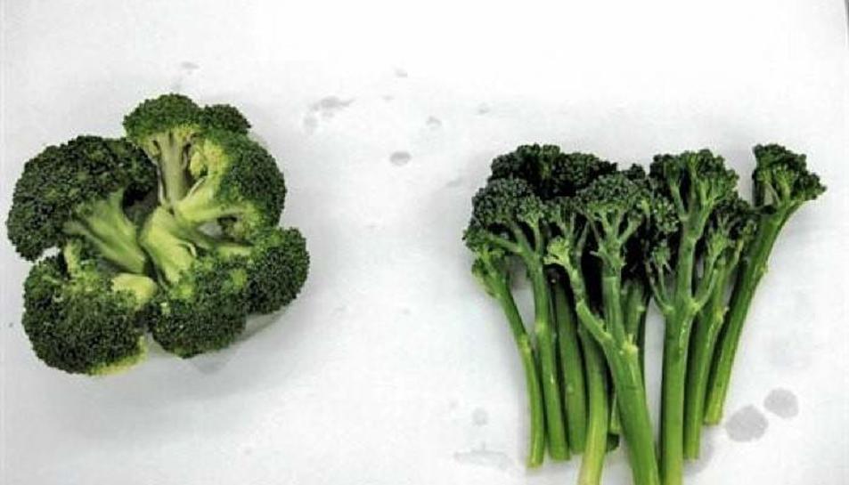 El bimi és un híbrid natural entre el bròquil i la col verda xinesa.