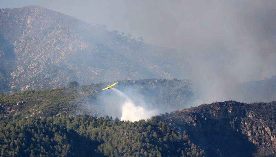 Pla general de la zona afectada per l'incendi a la serra de Cardó-Boix. Imatge del 27 de juliol de 2017