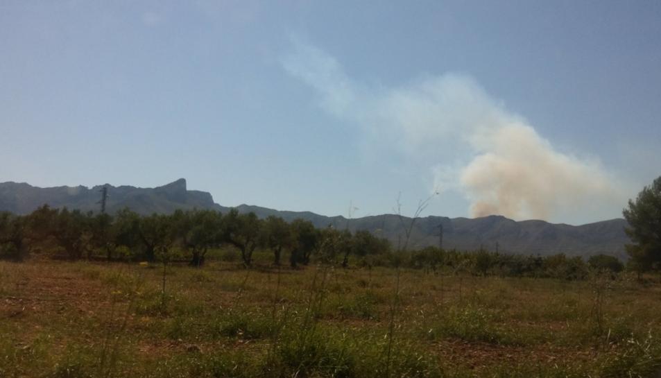La columna de fum generada pel foc vista des de la carretera TV-3022 a Rasquera.