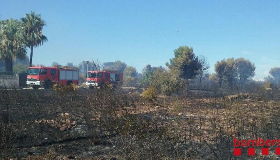 El foc ha cremat quatre hectàrees de vegetació periurbana.