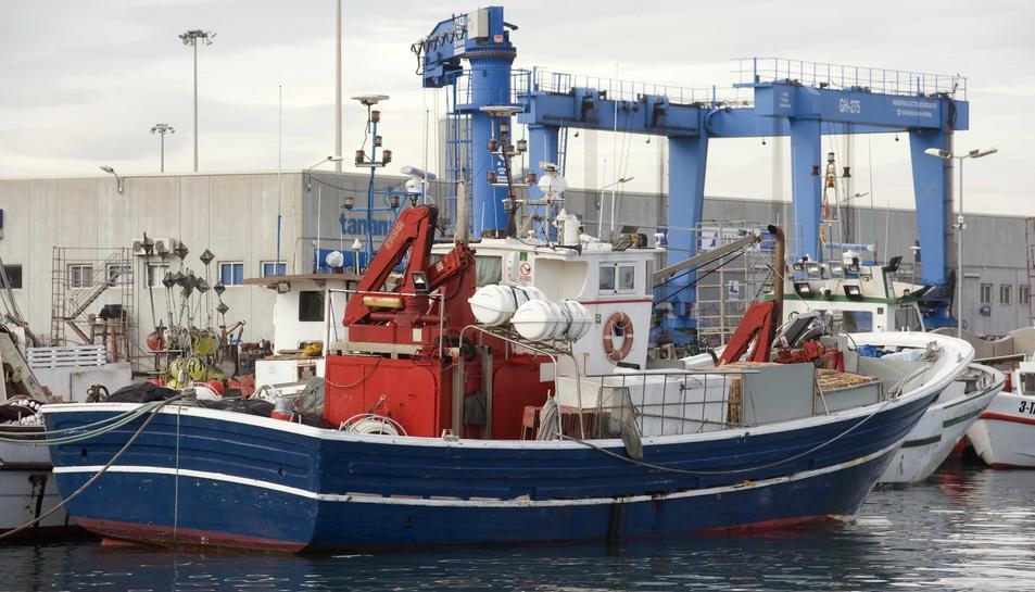 La temporada de la pesca d'encerclament acabarà al desembre, quan començarà la veda.