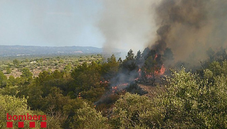 Imatge del foc, ubicat muntanya amunt a prop del quilòmetre 28 de la carretera C-12.