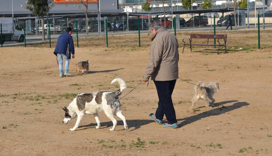 Propietaris de gossos passejant les mascotes.