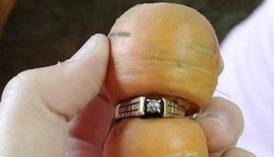 Imatge de l'anell trobat.