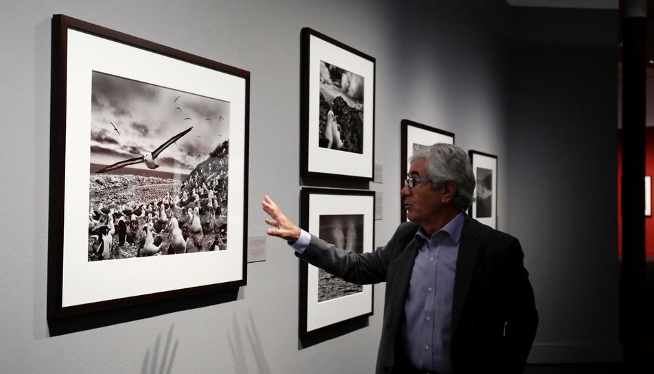 Una de les imatges que es podrà visitar en el marc de l'exposició 'Gènesi' a CaixaForum de Tarragona.