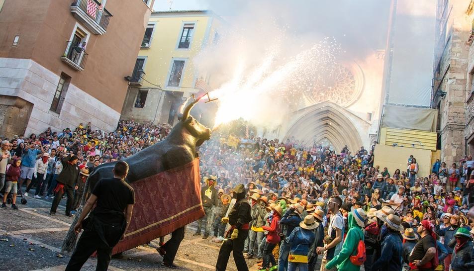 Imatge d'arxiu Bou de Tarragona