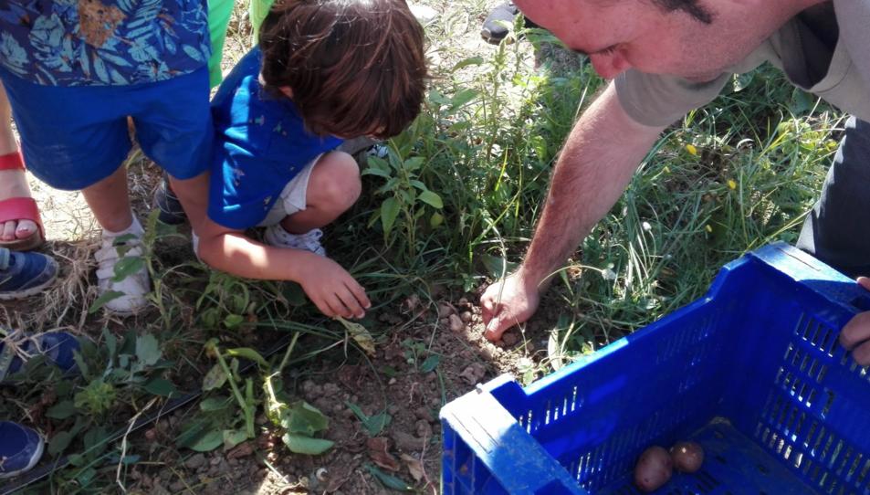 Jornada en la què l'Institut Sòl-de-riu va convidar infants de P3 a visitar l'hort.
