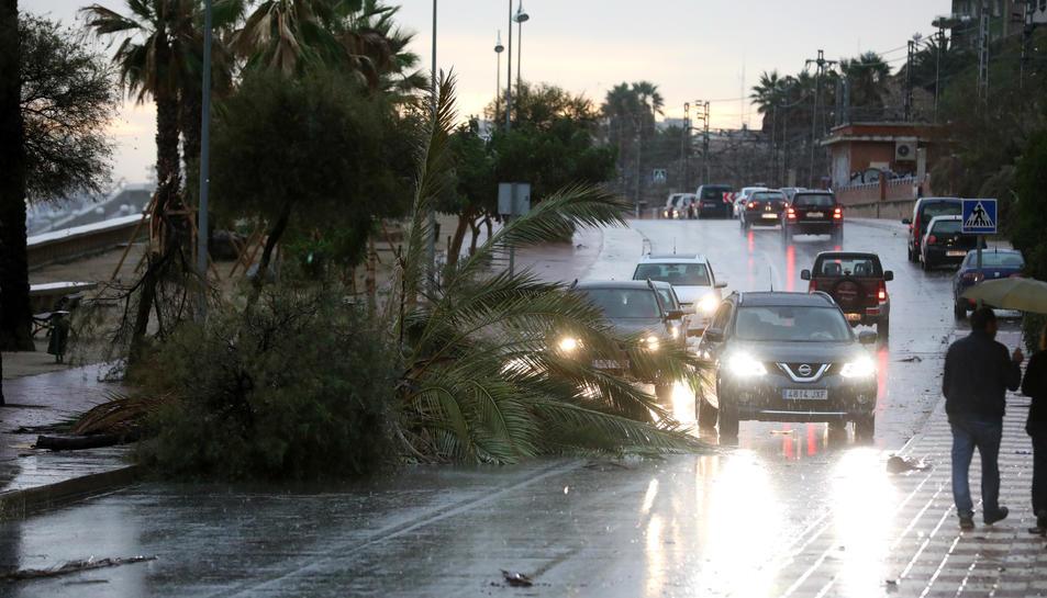 Les imatges de les conseqüències de la tempesta