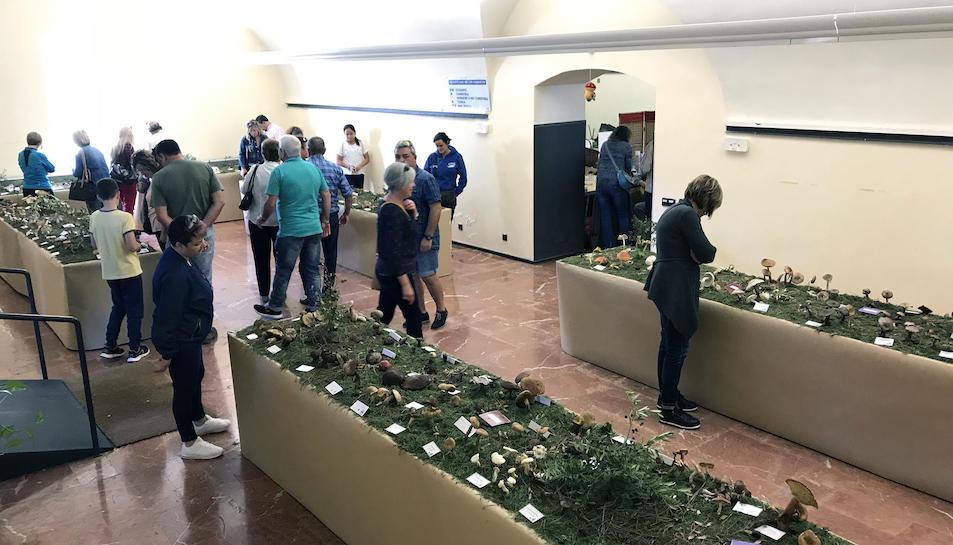 Els visitants passejant per la sala d'exposició.