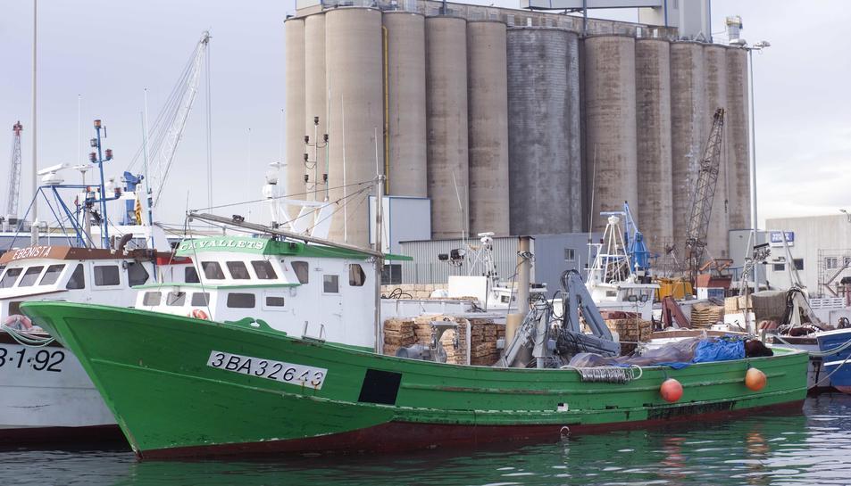 Entre el 2014 i el 2017, Tarragona ha perdut vuit barques de peix blau. Ara, se'n sumaran dos més.
