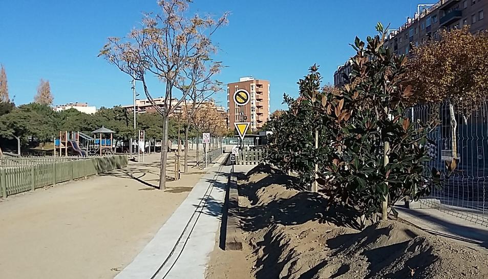Imatge dels arbres plantats al parc del Ferrocarril de Reus.
