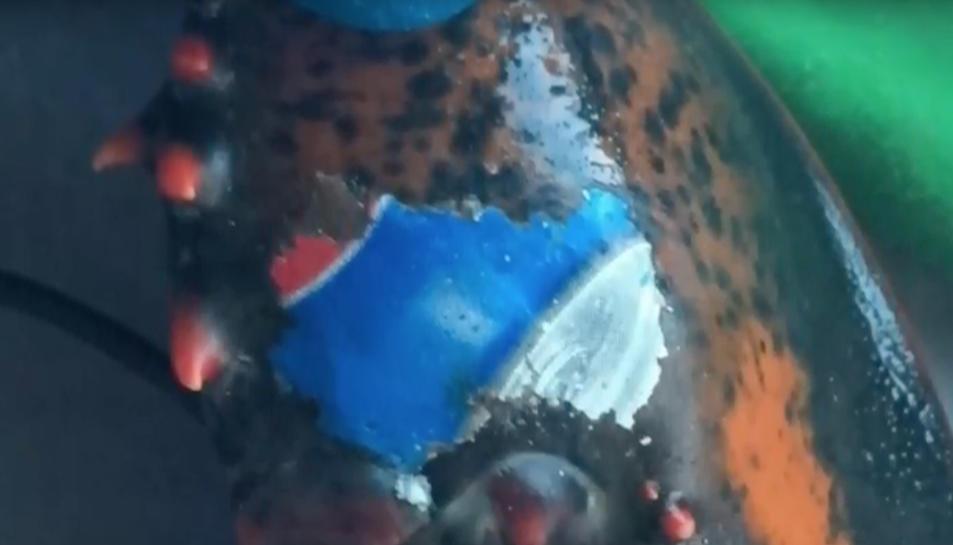 Imatge de la pinça del crustaci amb el logotip de Pepsi.