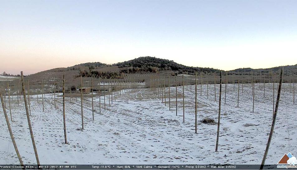 Imatge de la webcam de MeteoPrades a la zona dels Closos.