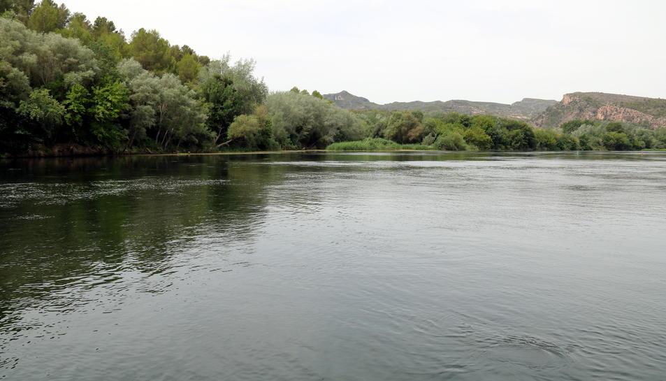 Pla general de la zona del marge esquerre del riu Ebre, al terme municipal de Miravet.