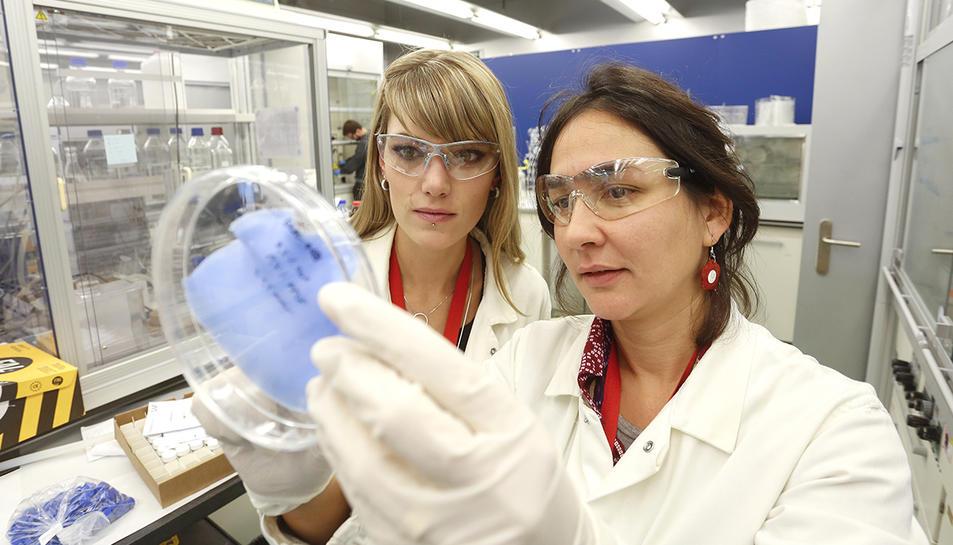 Dues de les investigadores de l'equip observant el nou material.