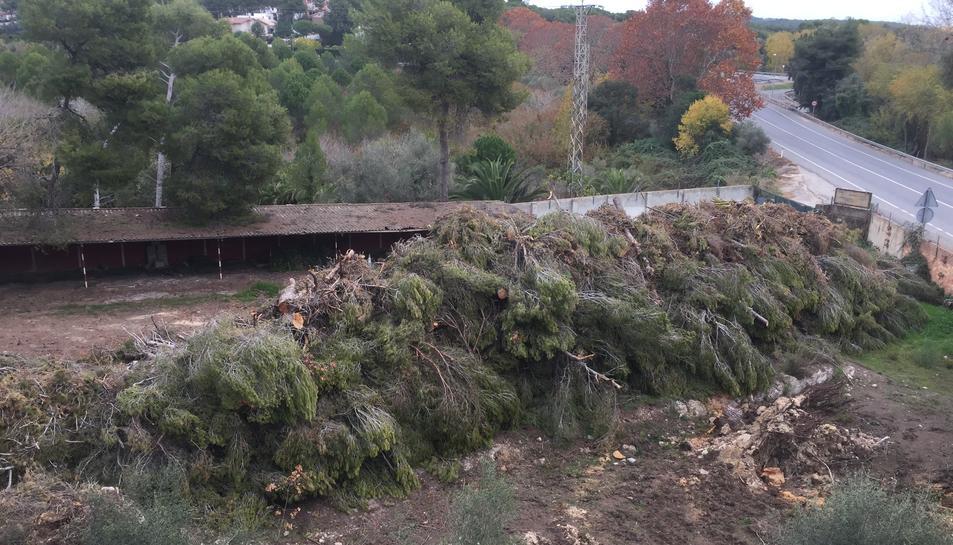 Les restes del temporal de l'octubre a l'antiga Ciutat Residencial