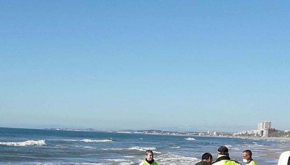 La policia local moment abans de treure el dofí mort de la platja