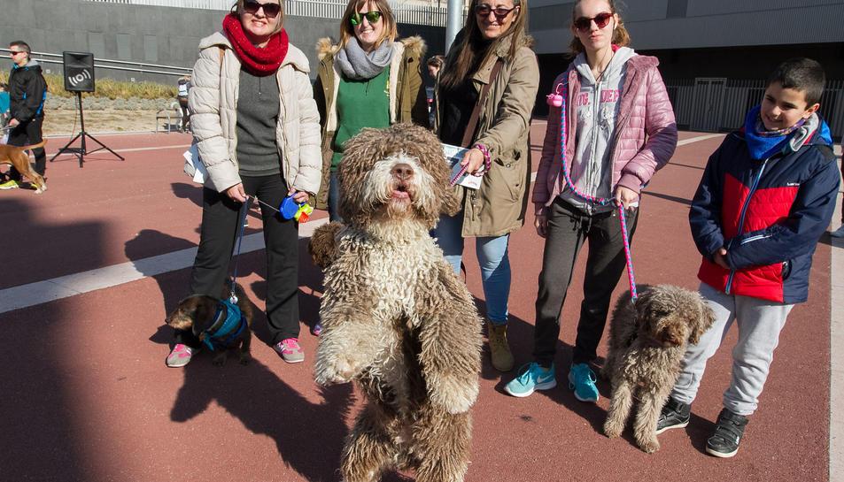 En la caminada, que sortia des de la plaça de l'Univers, es van poder veure gossos de totes les races.