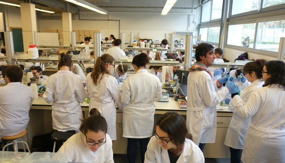 El QS World University Rànquings by Subject analitza 48 disciplines i, per primera vegada, inclou la URV, en la posició 401 de 450 d'arreu del món en la classificació de Química.