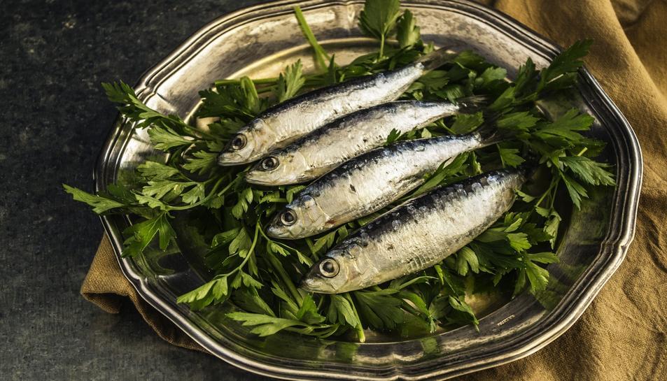 La proposta dels ministeris Espanyol i Portuguès consisteix en reduir un 14,1% la quota pesquera per la sardina atlàntica -de 17.000 a 14.600 tones-.