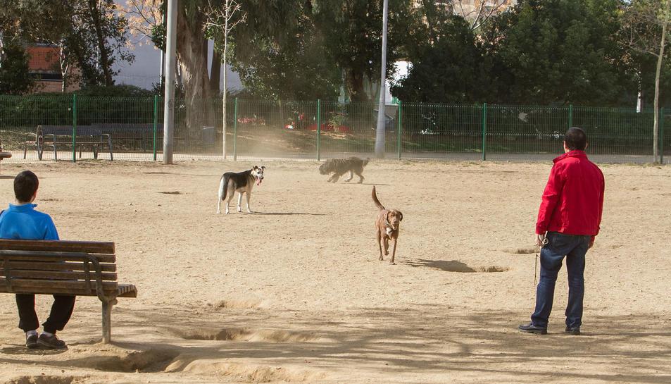 Imatge d'arxiu de diversos usuaris del parc per a gossos instal·lat a la plaça del Velòdrom.