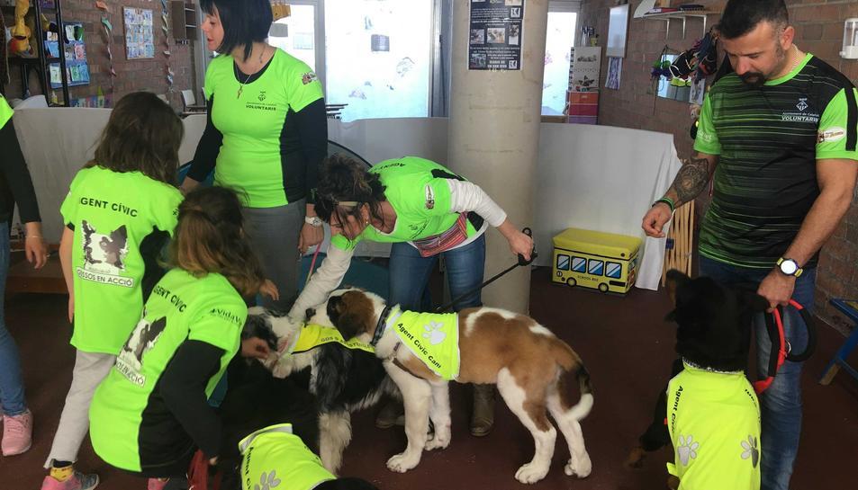 Els agents informen als propietaris dels cans de com actuar cívicament amb les mascotes i els expliquen la normativa.