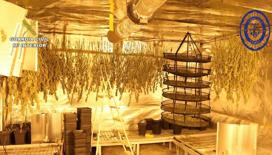 Imatge de la zona de l'habitatge que tenia destinada al cultiu i assecat de marihuana.