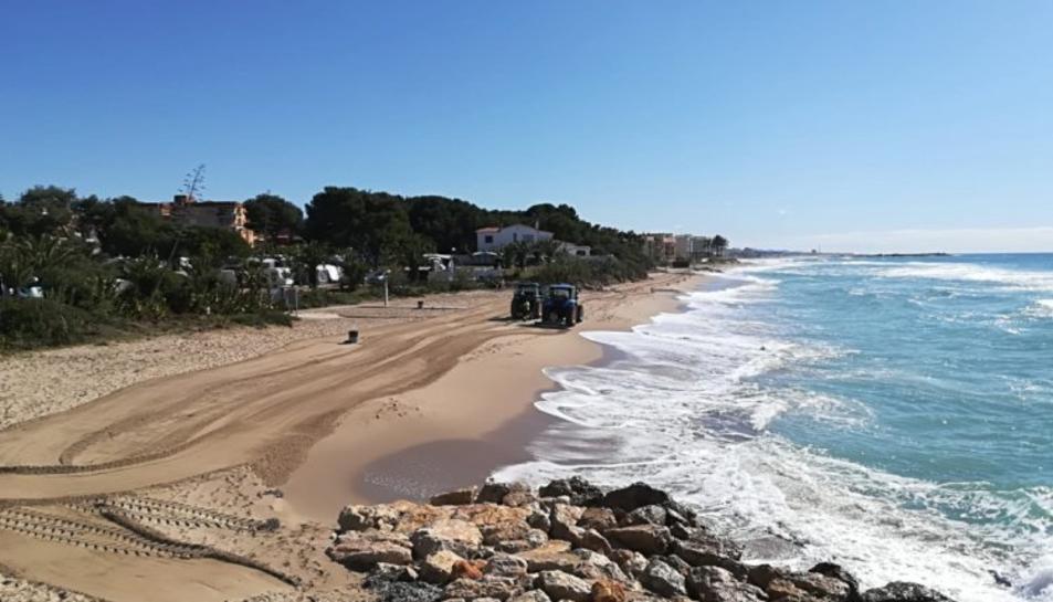 La Concejalía de Playas ha procedido a la retirada de las velellas de las playas.