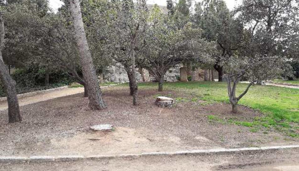 Una de les zones que es millorarà dels jardins del Camp del Mart.