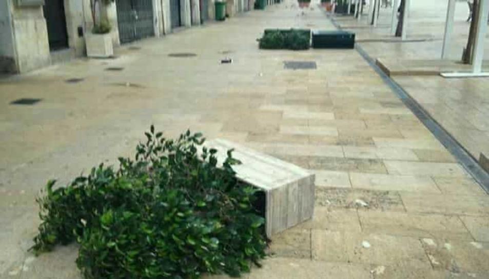 Les jardineres tombades a la plaça de la Font.