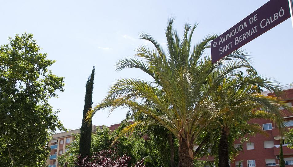 Cartelleria de l'avinguda.