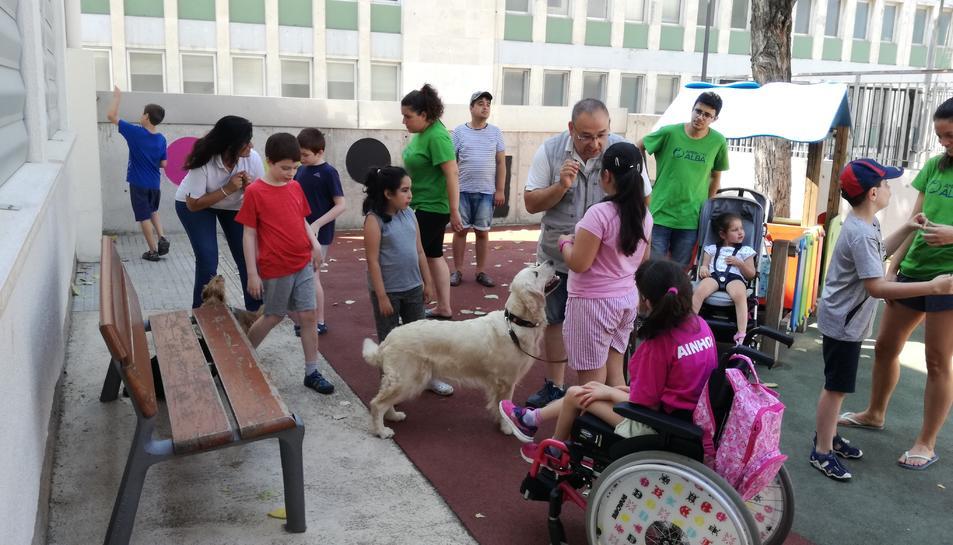 Les activitats amb gossos son l'estrella del Casal Adaptat.