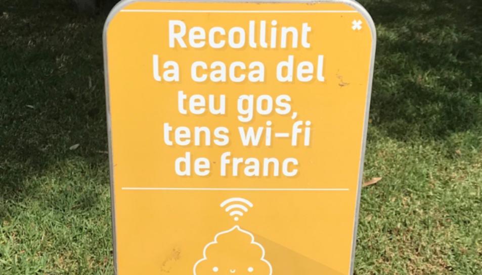 Imatge del cartell.