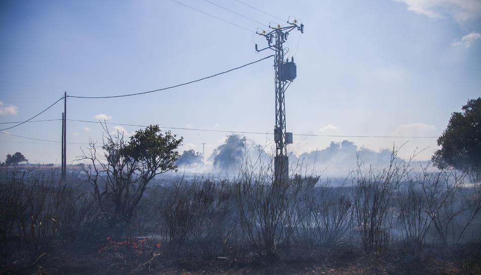 L'incendi originat als terrenys de l'avinguda de Bellissens ha revifat a la tarda.