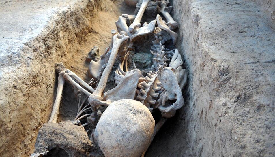 Algunes despulles dins d'una de la cinquantena de fosses que s'han excavat a Miravet.