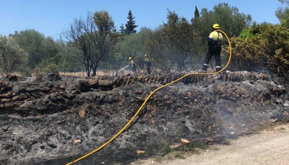 Imatge de l'incendi que ha tingut lloc al costat de la urbanització de Favaret a Amposta.