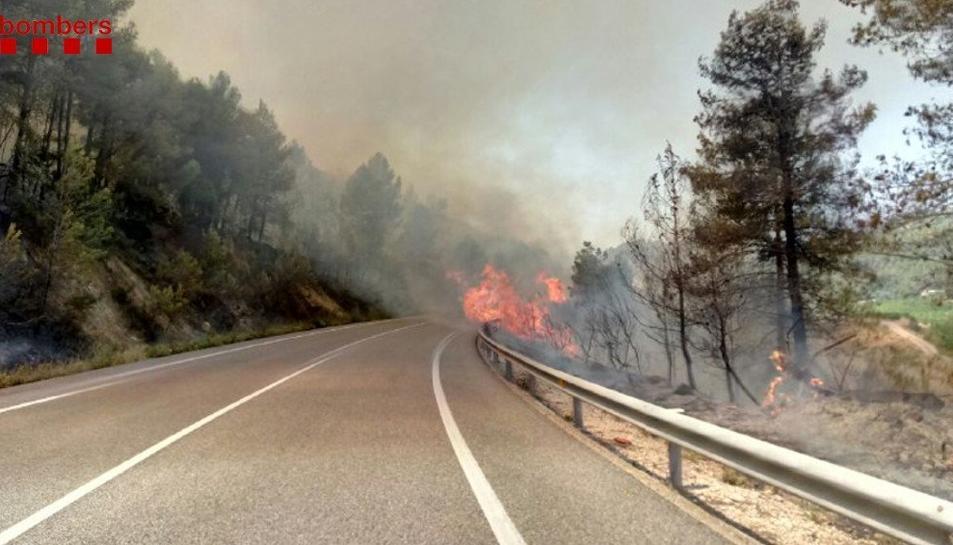 L'incendi talla la C-44 a la zona afectada.