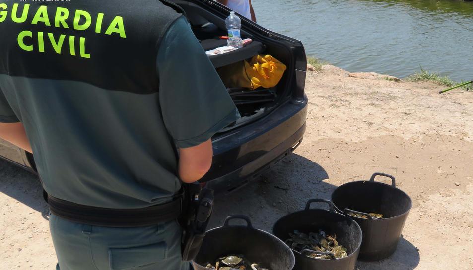 L'home va intentar insistentment que l'agent es quedés amb els bitllets, motiu pel qual va ser arrestat.