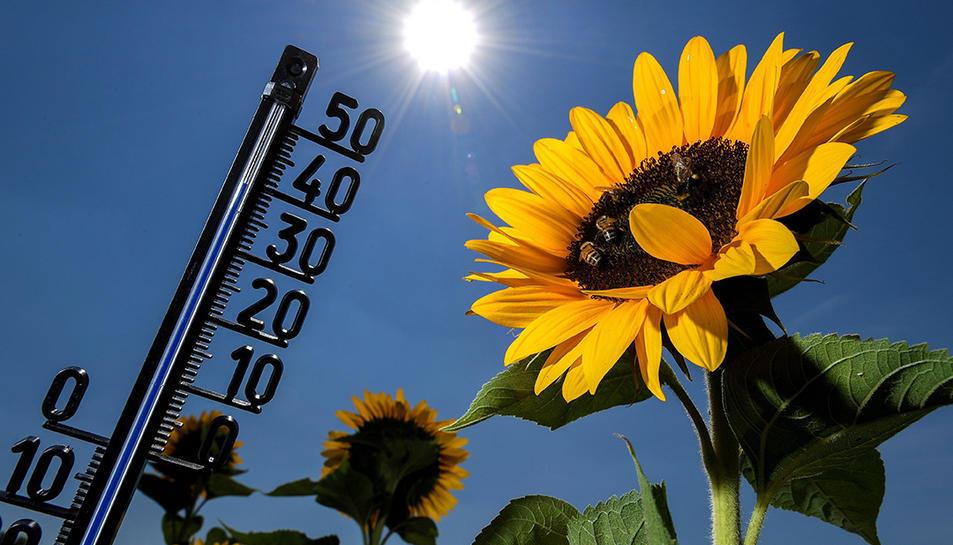 Les temperatures tornaran a partir d'avui i durant tot el cap de setmana.