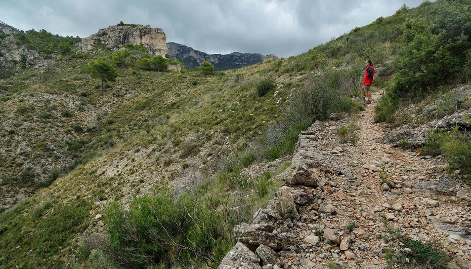 Imatge d'un camí de muntanya a la serra de Cardó, entre Tivenys i el Perelló.