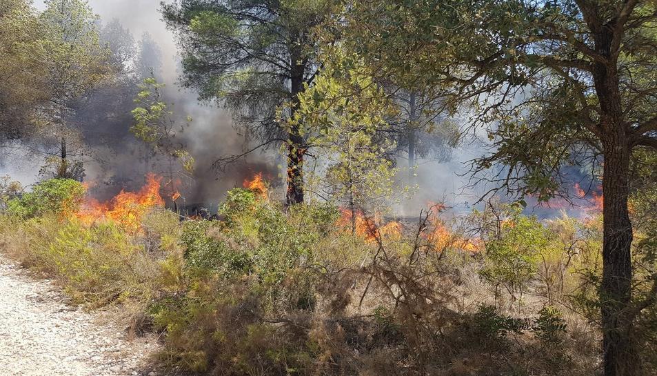 Els bombers ja estan treballant en l'extinció