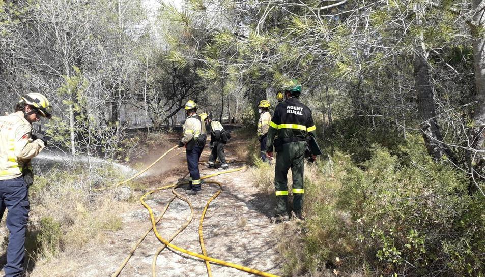 L'incendi ha afectat una superfície de 9.894 metres quadrats de vegetació forestal.