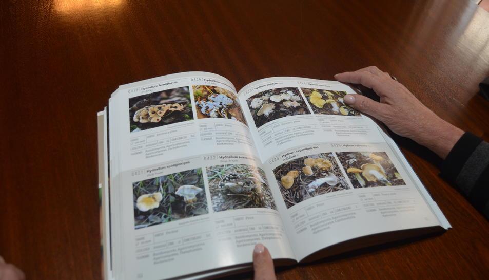 El llibre s'ha publicat en català i en castellà.