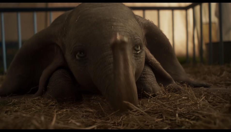 Imatge de Dumbo al tràiler publicat per Disney.