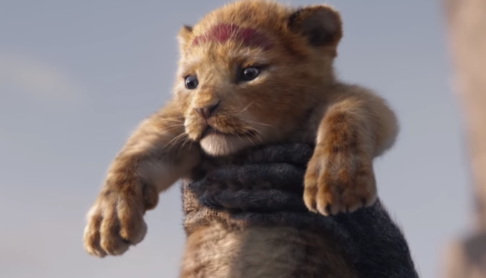 Imatge de Simba en l'inici de la pel·lícula.