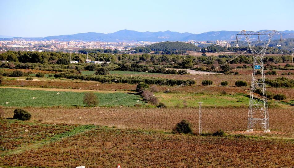 Terrenys de Banyeres del Penedès on CIMALSA preveu la construcció del Logis Penedès.