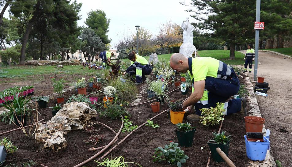 L'empresa de manteniment de parcs i jardins, el passat 20 de novembre al Camp de Mart.